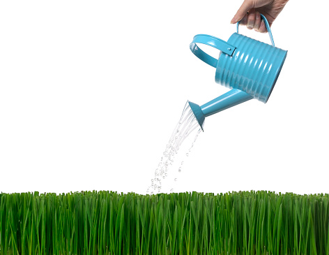 Planting「Watering」:スマホ壁紙(0)