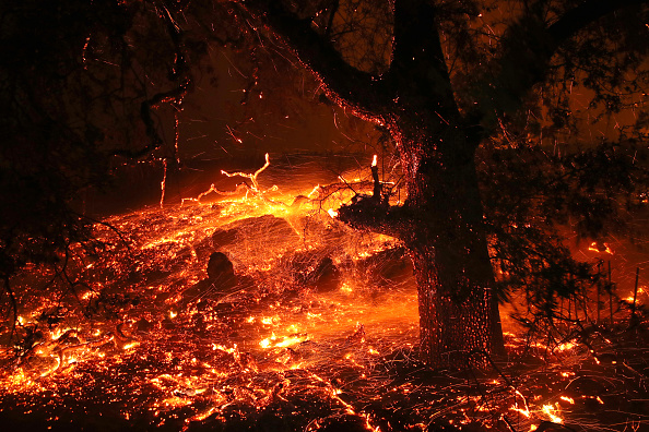 Bestpix「Evacuations Issued For Parts of Sonoma County As Kincade Fire Spreads」:写真・画像(12)[壁紙.com]