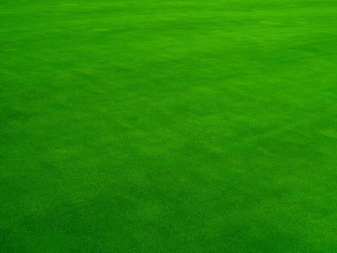 Aerial View「Real Putting Green」:スマホ壁紙(6)