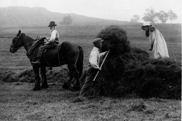 Haystack「Stacking Hay」:写真・画像(4)[壁紙.com]