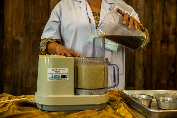 Salad「Thailand's Medical Marijuana Growing Facilities」:写真・画像(16)[壁紙.com]