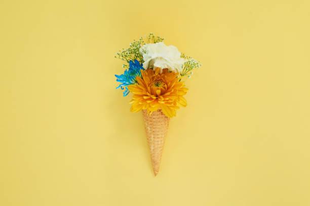Spring has sprung:スマホ壁紙(壁紙.com)