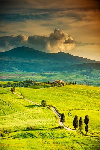 Monte Amiata「Winding road in Tuscany」:スマホ壁紙(14)