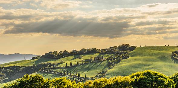 Hairpin Curve「Winding road in Tuscany」:スマホ壁紙(11)