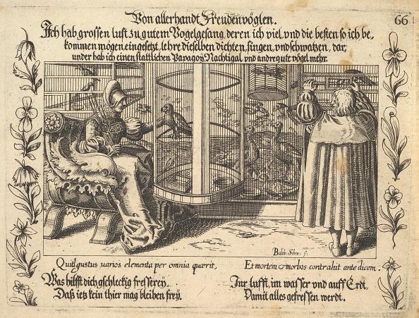 Etching「Von Allerhandt Freudenvöglen」:写真・画像(13)[壁紙.com]