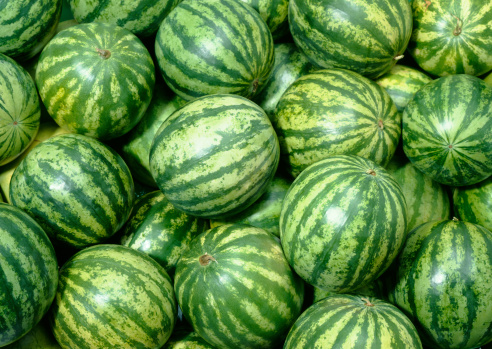 Watermelon「Melon wallpaper」:スマホ壁紙(11)