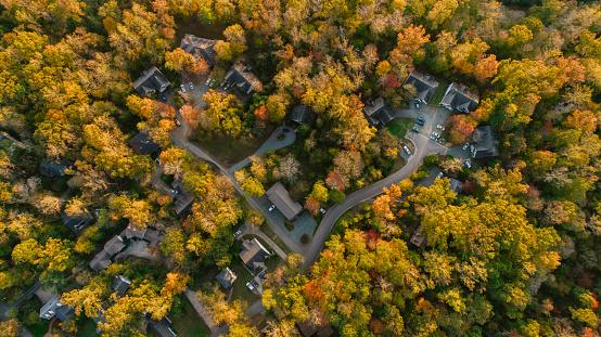 Cul-de-sac「Aerial of Neighborhood in the Fall」:スマホ壁紙(11)