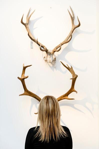 Animal Body Part「Duchess Of Devonshire Press Call」:写真・画像(19)[壁紙.com]