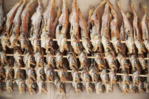 Pollock - Fish「Dried fish of walleye pollock,korea food」:スマホ壁紙(9)