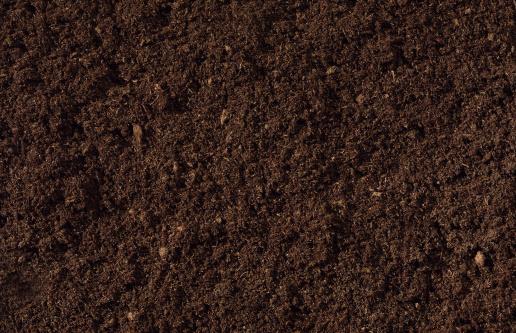 Planting「Compost Background」:スマホ壁紙(14)