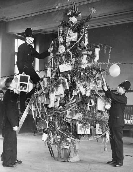 Recreational Pursuit「Decorating Tree」:写真・画像(9)[壁紙.com]