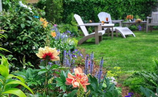 Adirondack Chair「Back yard garden with Peonies」:スマホ壁紙(9)