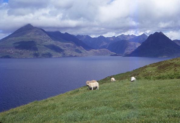 Superb view「The Black Cuillin And Loch Scavaig Near Elgol」:写真・画像(2)[壁紙.com]