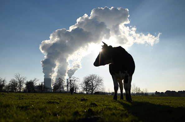 Environment「Germany Maintains Ambitious Goals For Renewable Energy Sources」:写真・画像(1)[壁紙.com]