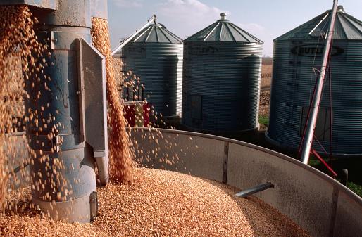 1980-1989「Processing Corn in Corn Dryer」:スマホ壁紙(3)
