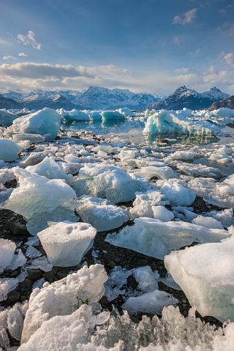 コロンビア大氷原「Stranded Columbia glacier icebergs in Columbia Bay.」:スマホ壁紙(8)