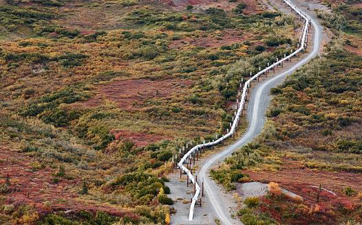 Pipeline「USA, Alaska, Oil Pipeline」:スマホ壁紙(14)