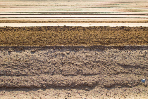 Plowed Field「Graded agriculture field ready for planting」:スマホ壁紙(5)