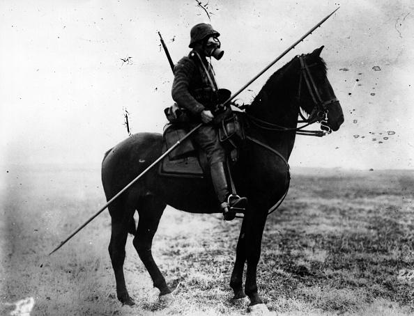 Horse「Cavalryman」:写真・画像(1)[壁紙.com]