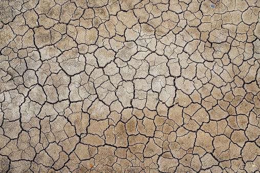 Drought「France, Marais salants de Guerande, dry cracked earth」:スマホ壁紙(2)