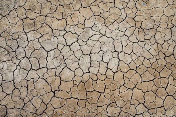 France, Marais salants de Guerande, dry cracked earth:スマホ壁紙(壁紙.com)