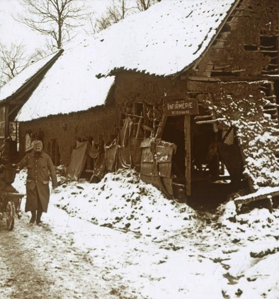 Horse「Veterinary Station For Horses」:写真・画像(1)[壁紙.com]