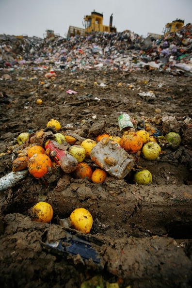 Food and Drink「Landfill Sites In The South Are In Danger Of Running Out Of Space」:写真・画像(12)[壁紙.com]