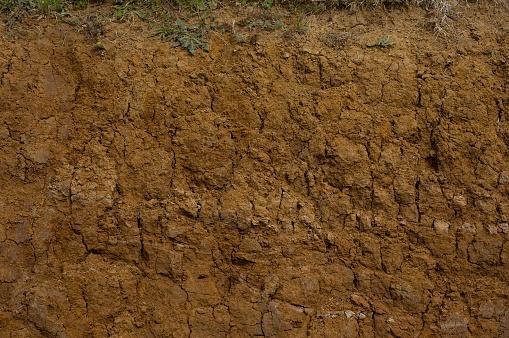 Digging「Muddy Cross Section Close-up」:スマホ壁紙(3)