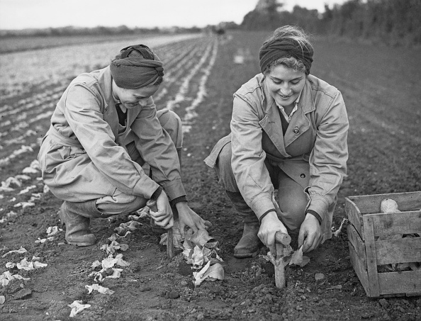 Business Finance and Industry「Women's Land Army」:写真・画像(9)[壁紙.com]