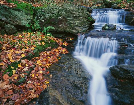 グリーン山脈「Small creek in autumn」:スマホ壁紙(13)