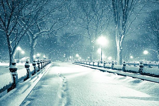Central park by night during snow storm:スマホ壁紙(壁紙.com)