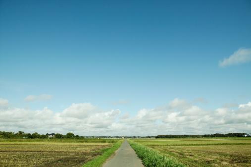Satoyama - Scenery「Japan, Chiba, road in countryside」:スマホ壁紙(13)