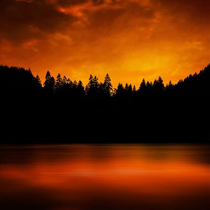 Inferno「forest fire」:スマホ壁紙(13)