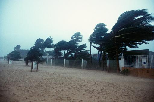 1990-1999「San Juan During Hurricane」:スマホ壁紙(19)