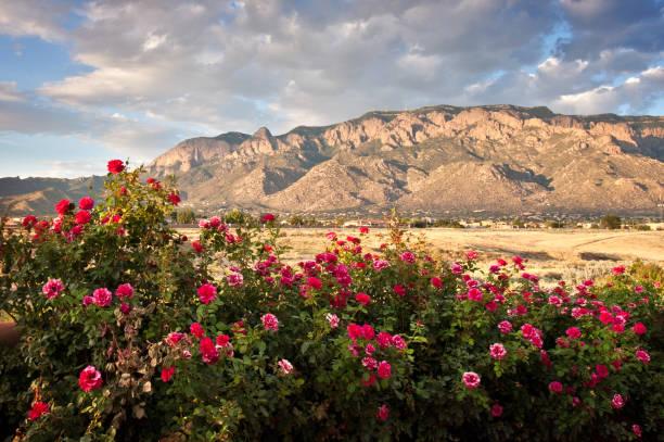 Sandia Mountains:スマホ壁紙(壁紙.com)