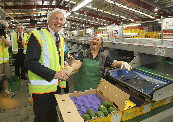 Avocado「Phil Goff Campaigns In Bay Of Plenty」:写真・画像(13)[壁紙.com]