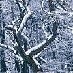 ウィーンの森壁紙の画像(壁紙.com)