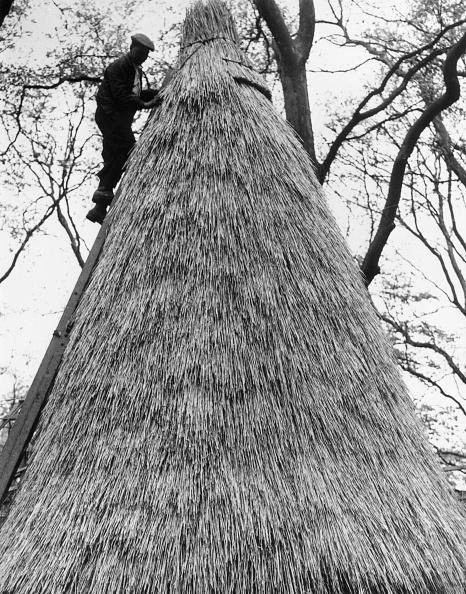 Haystack「Thatcher's Roof」:写真・画像(2)[壁紙.com]