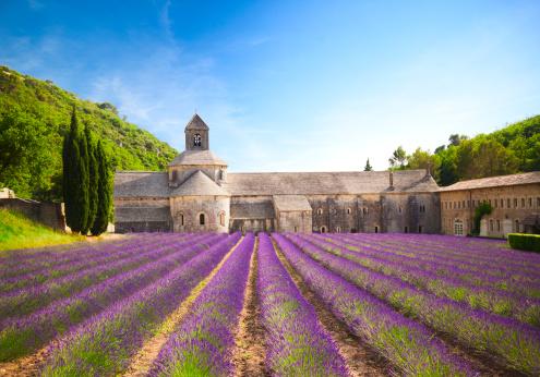 Provence-Alpes-Cote d'Azur「Senanque Abbey (Provence, France)」:スマホ壁紙(11)