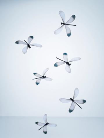 Dragonfly「Dragonflies flying in empty space」:スマホ壁紙(4)