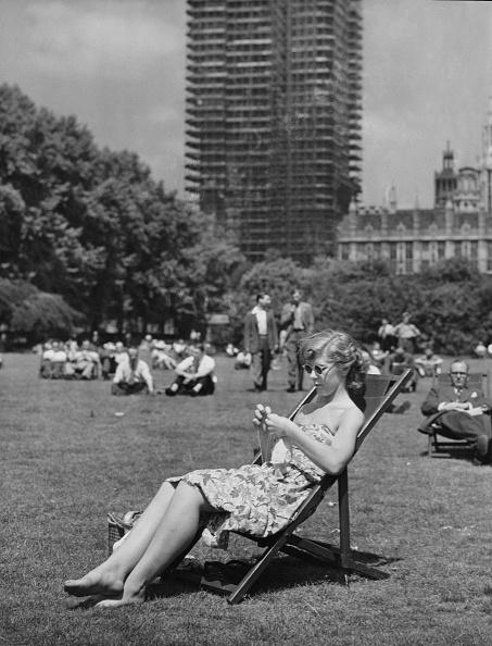 Mid Calf Length「Lunch Hour Im The Park」:写真・画像(2)[壁紙.com]