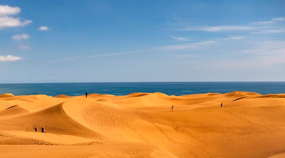 Canary Islands「Dunes of maspalomas - Canary Islands, Spain」:スマホ壁紙(6)