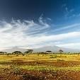 キリマンジャロ山壁紙の画像(壁紙.com)