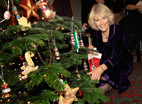 Tree「Underprivileged Children Help The Duchess Of Cornwall Decorate The Clarence House Christmas Tree」:写真・画像(10)[壁紙.com]