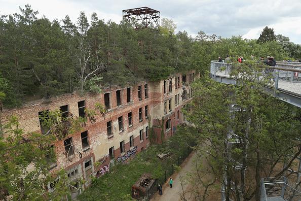 Beelitz「Elevated Treetop Path Leads Over Sanatorium Ruin」:写真・画像(1)[壁紙.com]