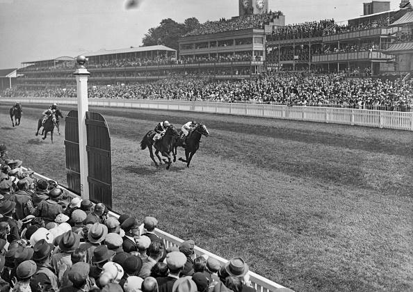 Horse「Quashed Wins Ascot」:写真・画像(8)[壁紙.com]