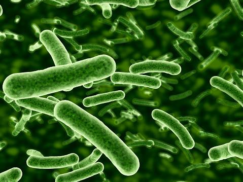 Micro Organism「Microscope view of bacteria flowing」:スマホ壁紙(6)