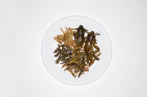 背景「Thai dish with insects, overhead view」:スマホ壁紙(13)