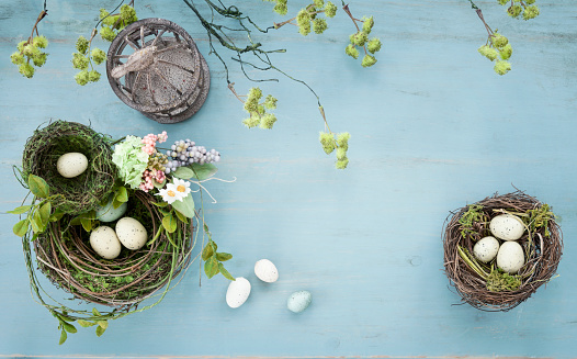 Wildflower「Easter Bird Nest with Easter Eggs on Rustic Blue Wood Background」:スマホ壁紙(4)