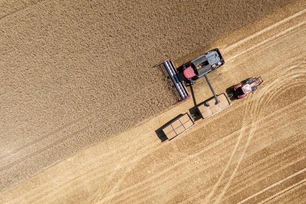 ハーベスタ収穫フィールド、テューリンゲン州、ドイツの小麦:スマホ壁紙(壁紙.com)